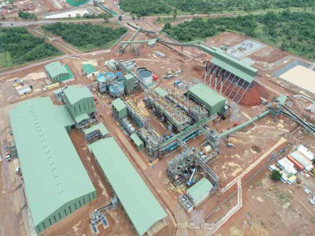 Nokeng plant